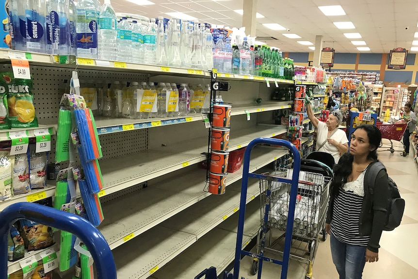 A shopper in Sedano's Supermarket looks at nearly empty water shelves.