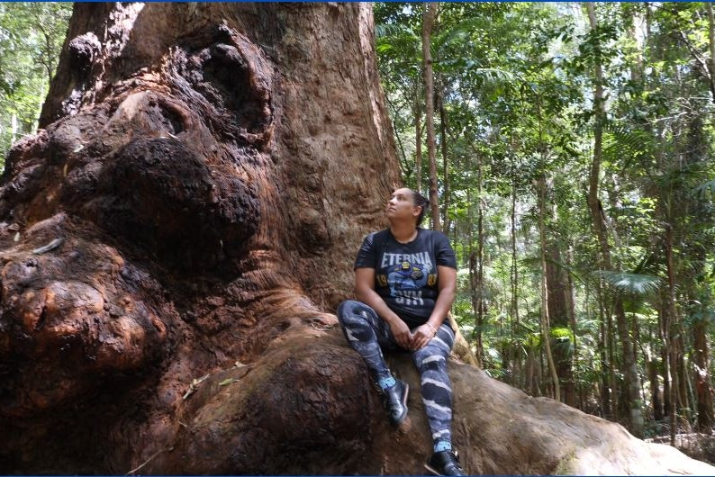 An Aboriginal woman sits on the large root of a tree with very thin trees in the bush behind.