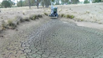 Wide shot of a dry dam in a paddock.