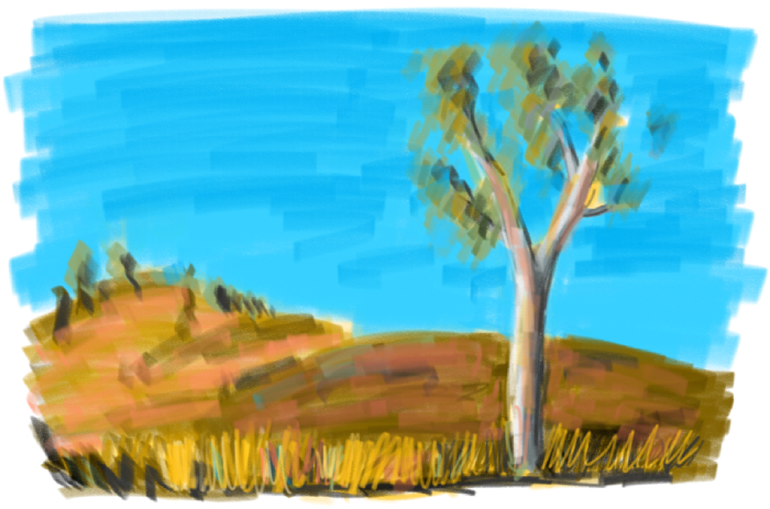 Epic hand drawn landscape with a majestic gum tree and general orange tinge.