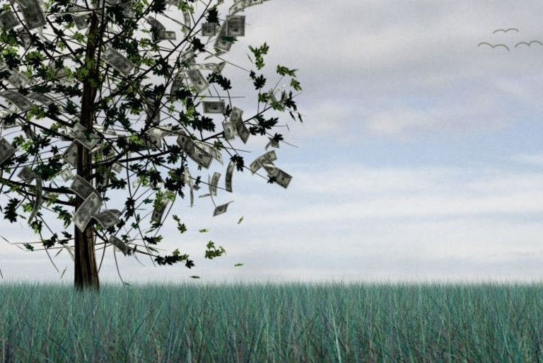 Money growing on a tree (Getty Creative Images: Photodisc)