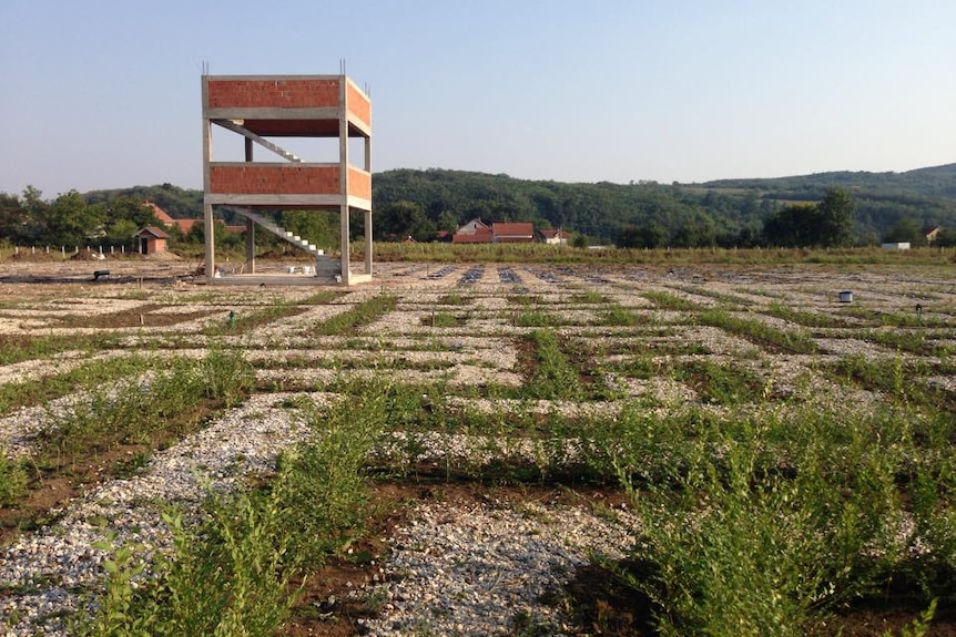 The maze being built in Serbia.
