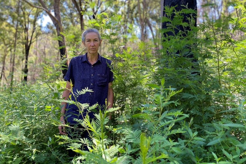A woman stands in a field of weeds wearing a blue shirt