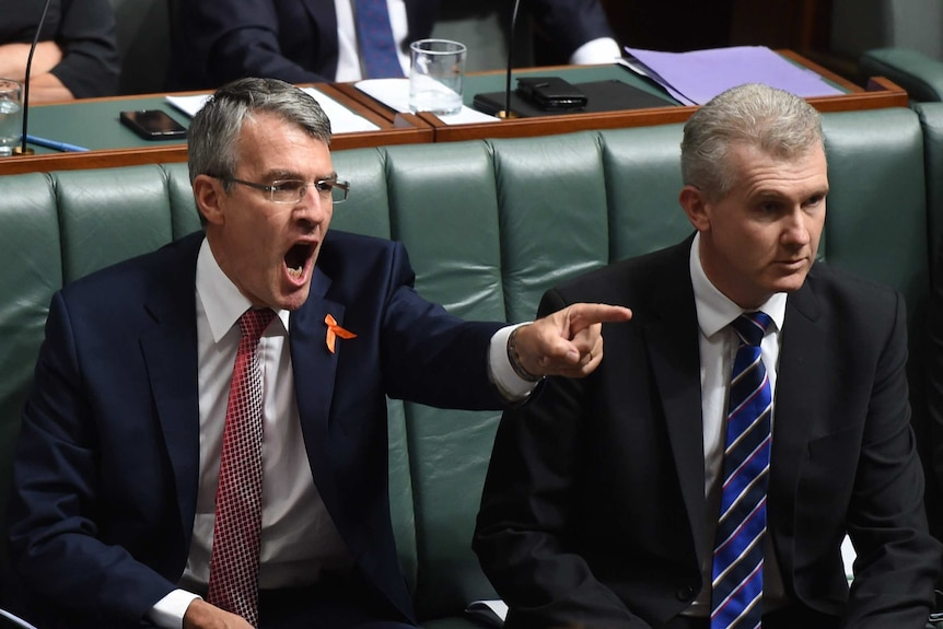 Shadow Attorney-General Mark Dreyfus reacts Question Time