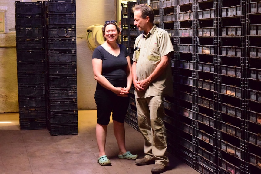 George and Kath Mingin stand surrounded by black crates filled with worms and compost.