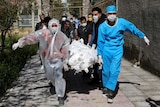 People in protective gear race a body wrapped in a sheet out of a Tehran apartment