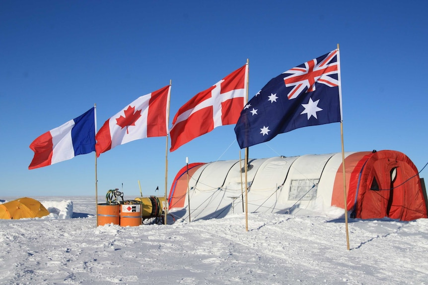 Four flags raised in the ice next to a camp.