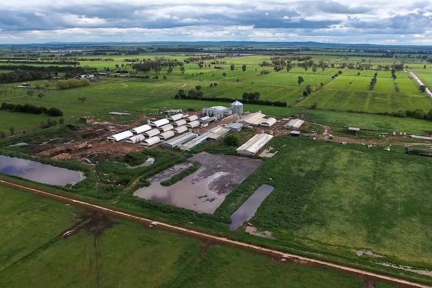 Aerial view of a piggery at Stanhope that will be expanded with a power plant and glasshouse.