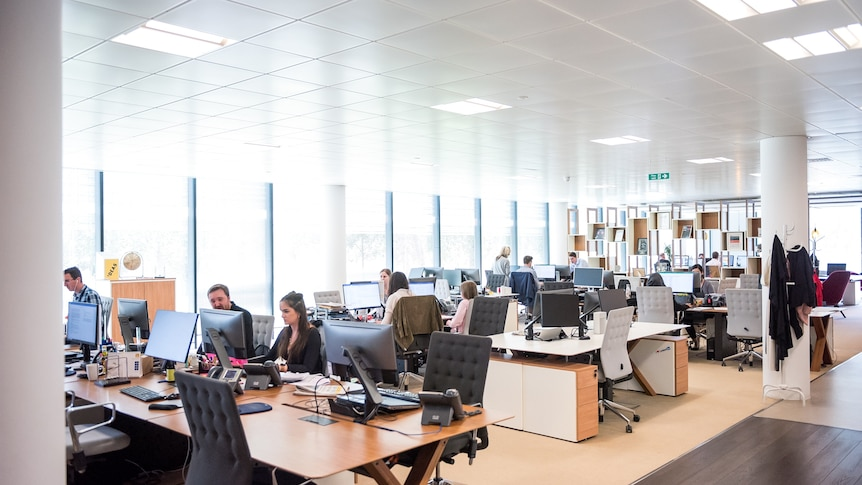 A wide shot of a light, open-plan office space in which many chairs are empty, and other people sit at computer screens.