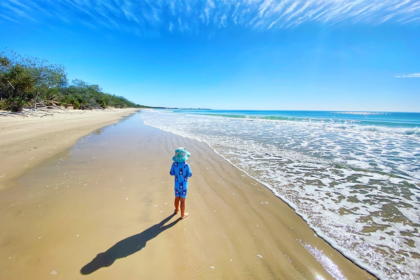 A lone child stands on a beach.