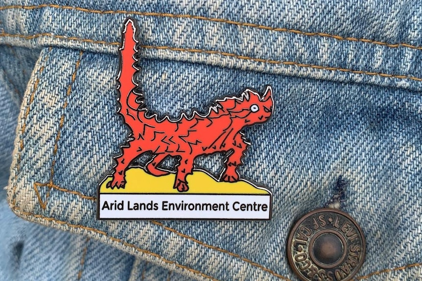 """A pin on a denim garment depicting a horny red lizard with the words """"Arid Lands Environment Centre"""" beneath it."""