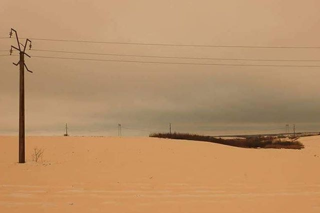 Orange-coloured snow covering a road with power lines over the top.