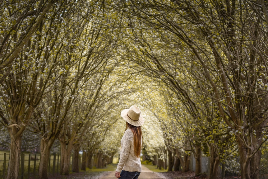 A woman wearing a broad hat stands under a bridge of blossom trees.