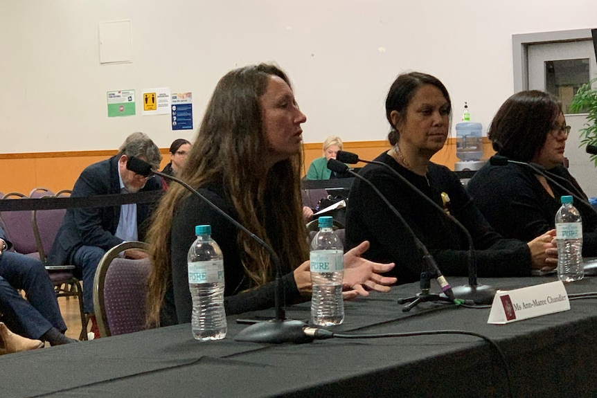 Women sitting at a table speaking at a parliamentary inquiry