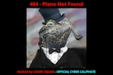 An image of a lizard wearing a top hat and a monocle shows on Malaysian Airlines' website