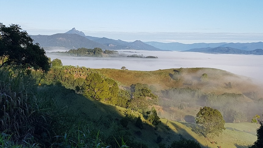Mt Warning on a chilly morning.