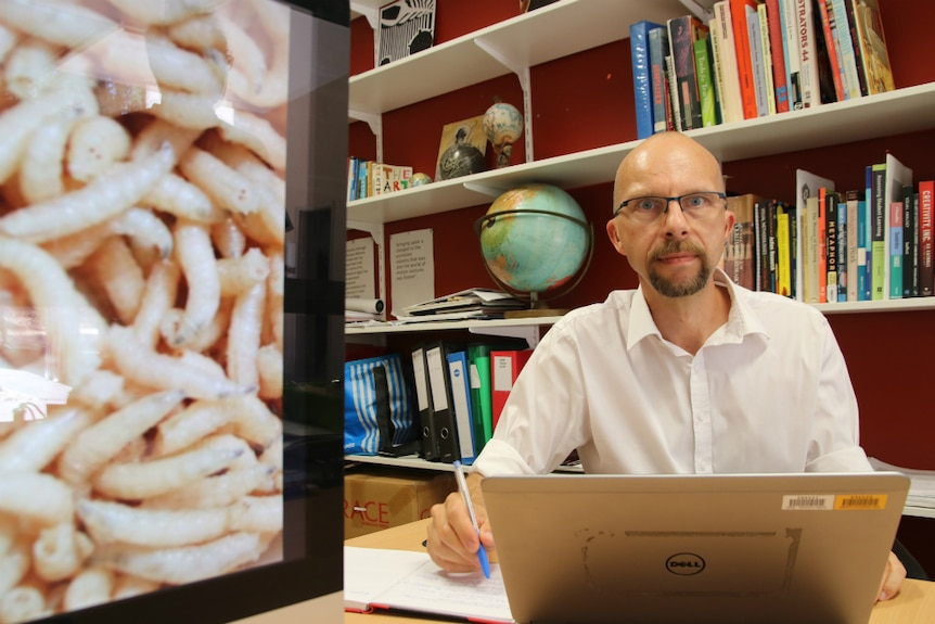 Maggots on the left of the photo with a man staring at the camera with books on shelves in the background.