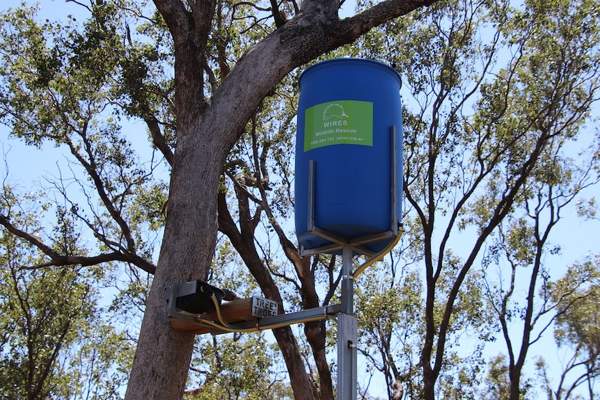 A water drum device to assist drought-affected wildlife.