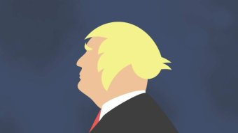 A graphic depicts Donald Trump's hair as the Twitter bird logo.