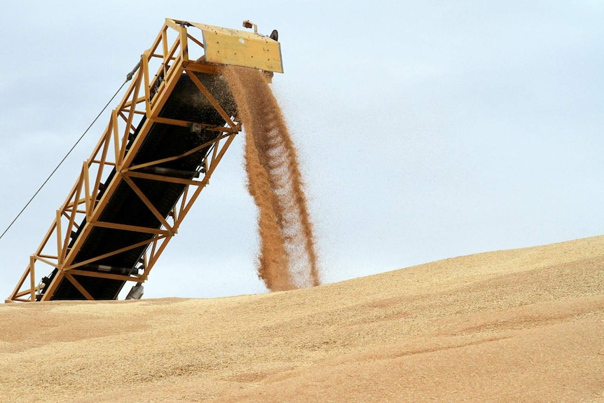 Bulk grains rolling in