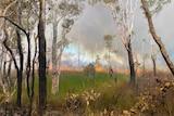 A fire burns through Australian bushland.