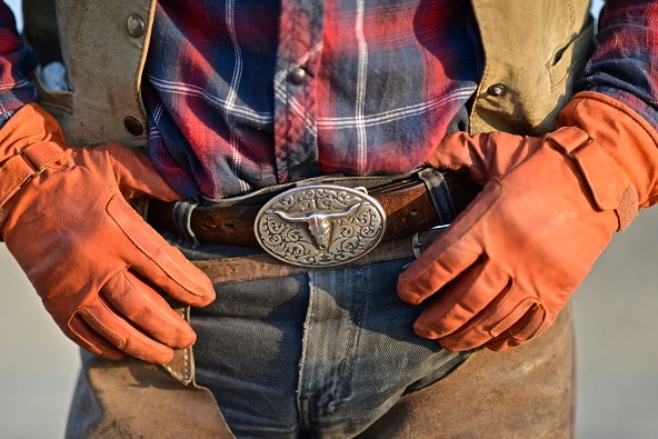 Gloved hands hold a buckled belt on a farm setting