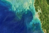 A satellite image showing internal waves in the Andaman Sea.