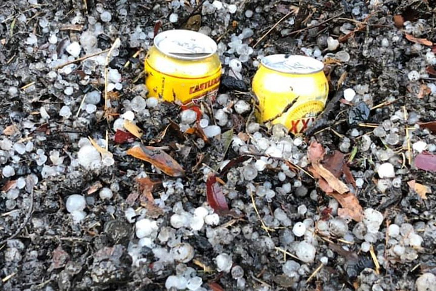 Two cans of beer embedded in hail on the ground