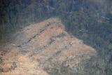 Native forest logging, north east Tasmania