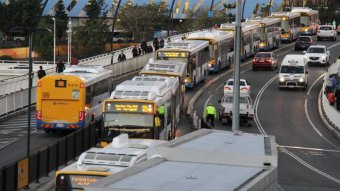 Busses line up by the side of a road.
