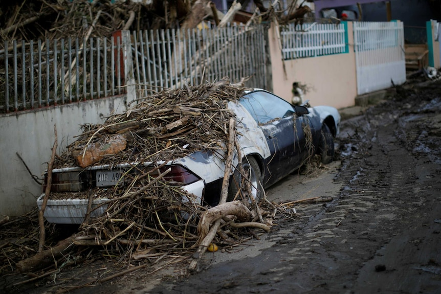 A black and white car parked in a street in Puerto Rico is covered by fallen branches and debris following Hurricane Maria.