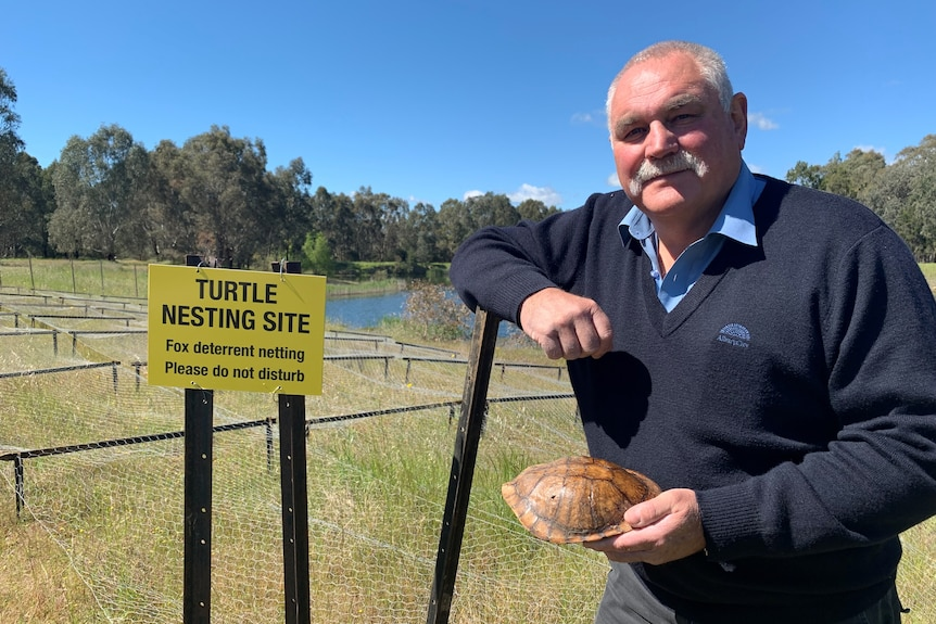 John Hawkins holds the shell of an eastern long-neck turtle while leaning on wire fencing.