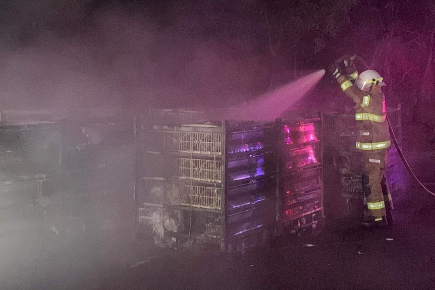 A firefighters hoses down crates in the dark