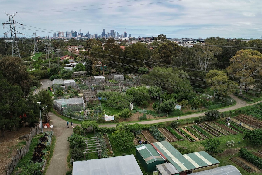 An urban farm in East Brunswick, Melbourne