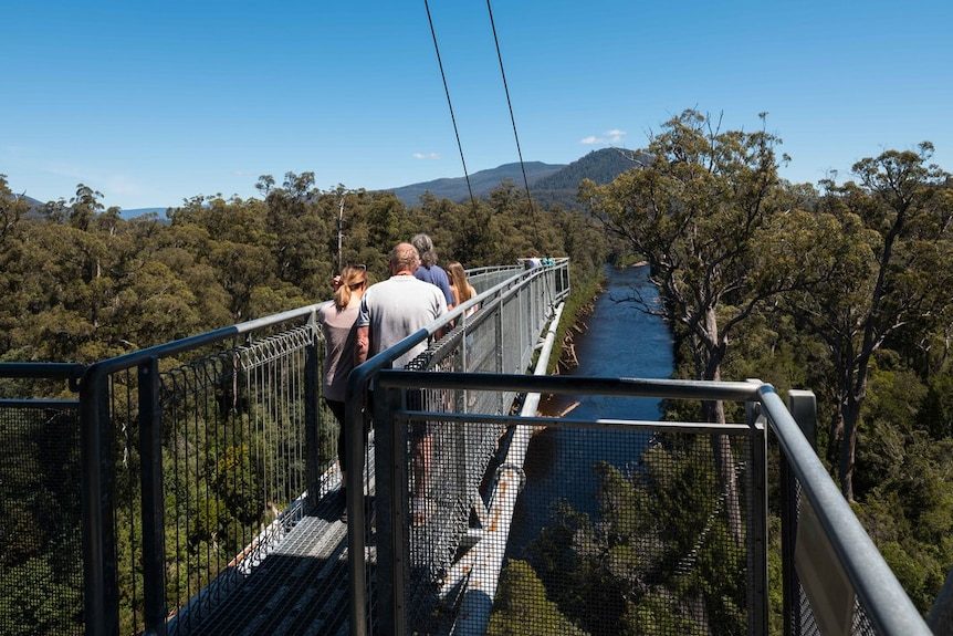 Tourists on suspended walkway above forest and river.