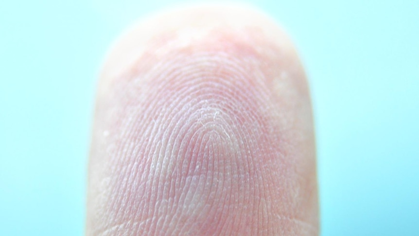 The technology captures the vein patterns in a person's fingers for future scans.