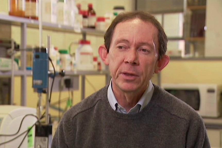 CSIRO Scientist talking to Landline about kombucha in Australia
