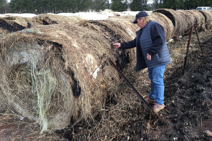 a man inspects a bale of hay that has been burnt with rows of bales in the background
