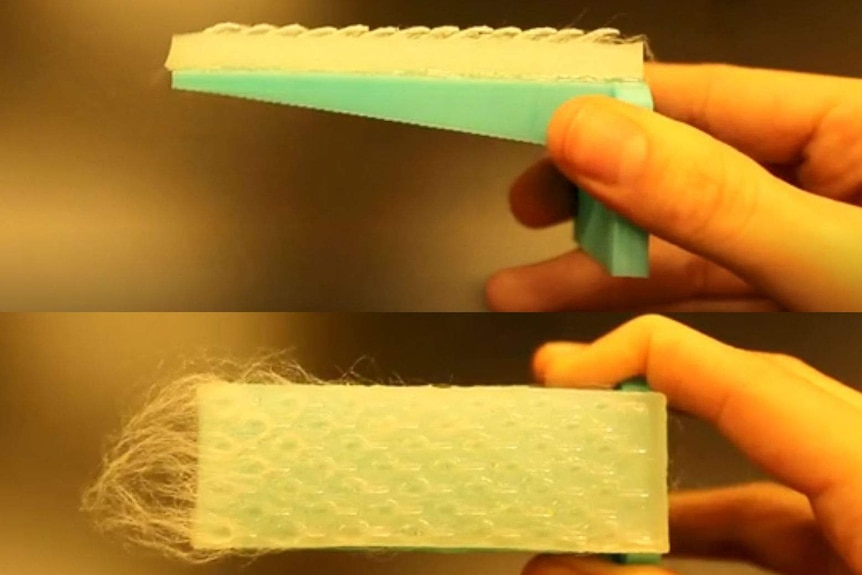 Flexible plastic brush inspired by a cat tongue.