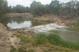 Water spilling over the weir at Wilcannia on Sunday, March 13, 2016.