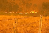 Fire rages in Mount Archer