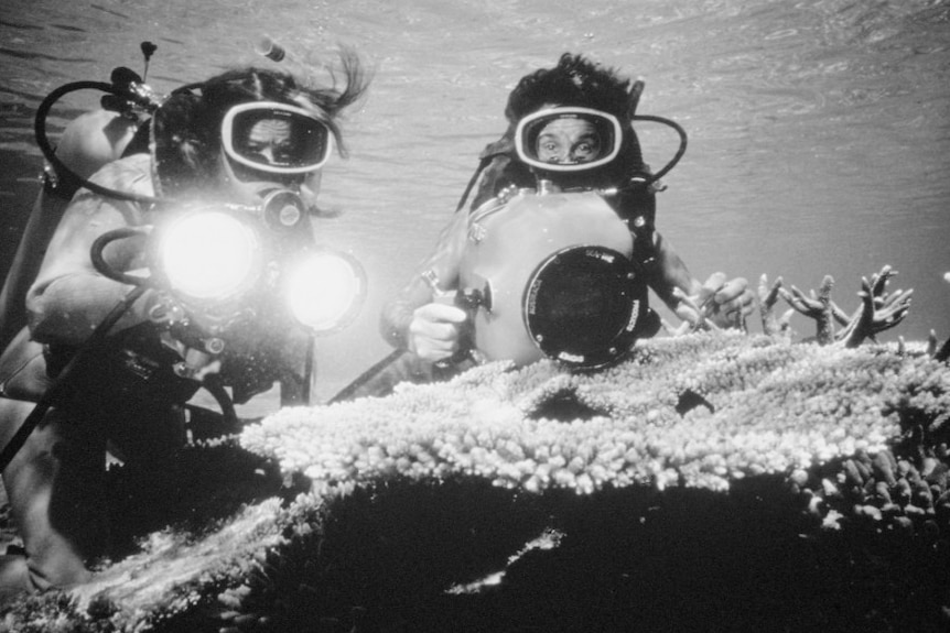 Black and white footage of divers with camera and lights filming coral.