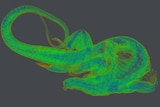 A bright green X-ray scan of an Australia Lace Monitor with a long tail clearly distinguishable.