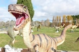Police say the 1.6 metre fibreglass Utahraptor was found in the sunroom of a north Canberra home.