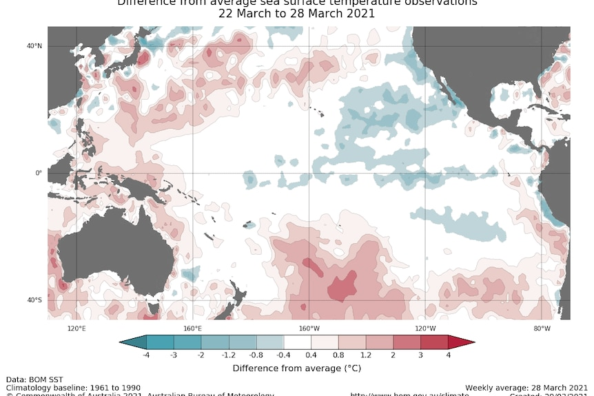 Map showing cool water in the central Pacific surrounded by warm water to the west.
