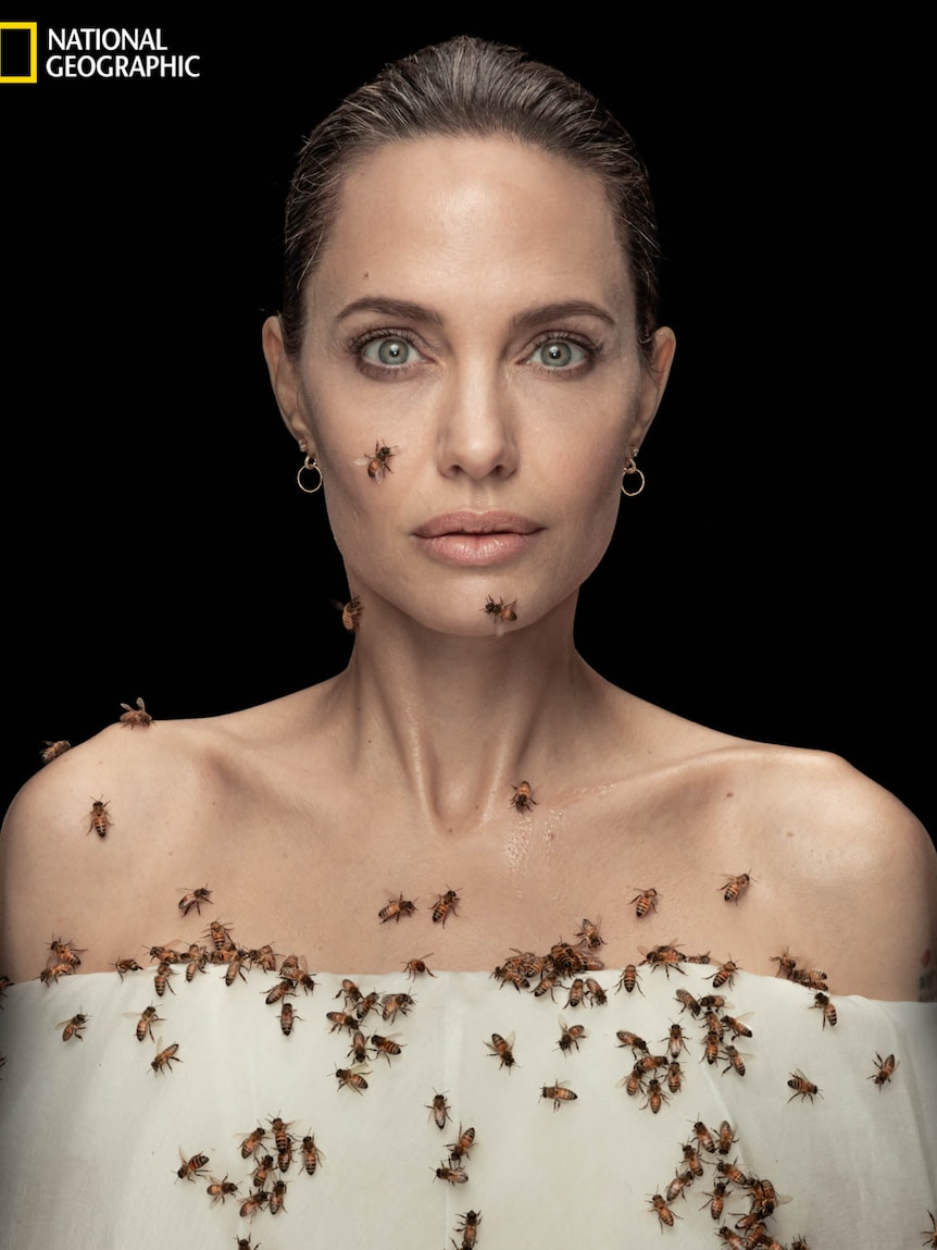 Angelina Jolie with bees crawling on her torso and face.