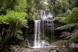 Water cascades down Russell Falls