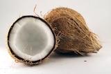 Coconut whole fruit