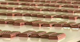 Chocolate on a conveyor belt