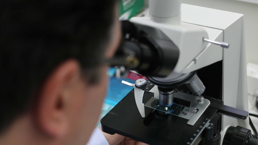 Play Audio. A microbiologist looks down a microscope. Duration: 7 minutes 14 seconds